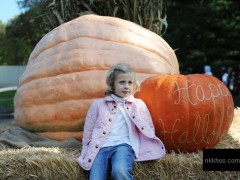 biggest pumpkin the world