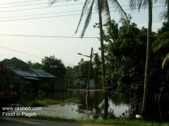 pagoh flood 04