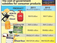 malaysia subsidies for consumer products