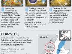 the higgs particle