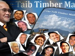 taib timber mafia
