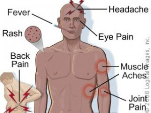 Dengue_Fever_symptoms