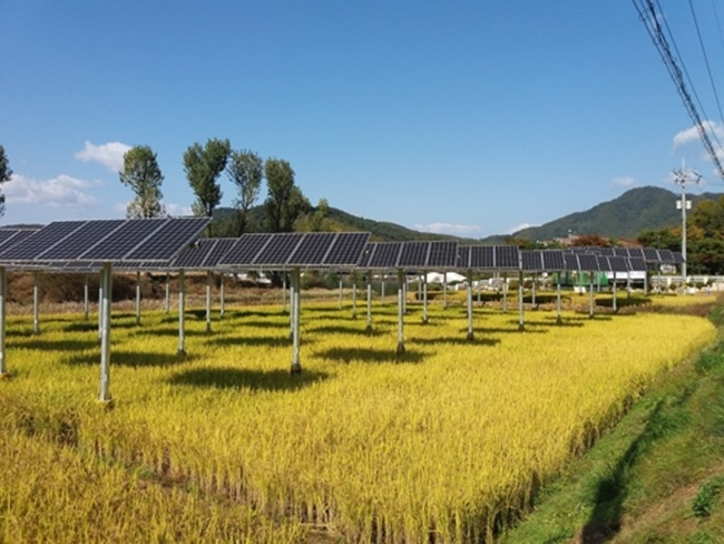 Solar energy is a viable and feasible option in Malaysia? » nkkhoo com